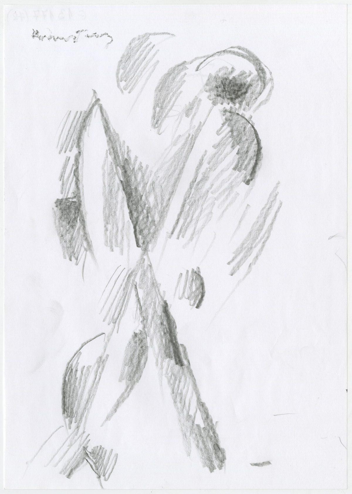 G13177(78)<br/> <b>Cím:</b> Egy formaálom megfoghatatlan csodája <br/> <b>Méret cm:</b> 29,6X21 <br/> <b>Készült:</b> 2005. <br/> <b>Technika:</b> ceruza<br/>